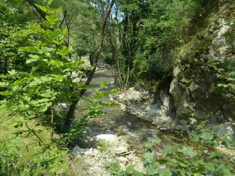 Valea Almăjului