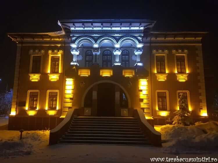 Muzeul Ion Irimescu
