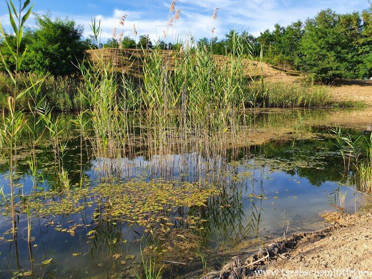Laguna Albastră din Aghireșu